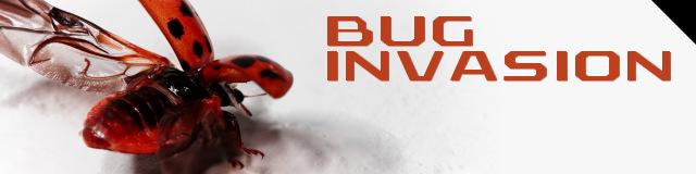 BugInvasion